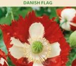 DARŽINĖS AGUONOS DANISH FLAG