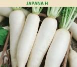 VALGOMIEJI RIDIKAI JAPANA H