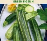 CUKINIJOS GREEN TIGER H