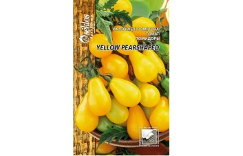 VALGOMIEJI POMIDORAI YELLOW PEARSHAPED
