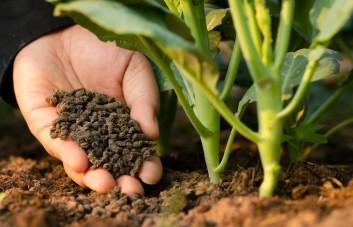 Bio-organinės trąšos