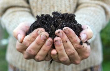 Organinis kompostas ir žemė