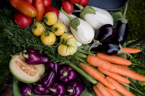 Naujienos aistringiems sodininkams: naujos veislės ir patarimai