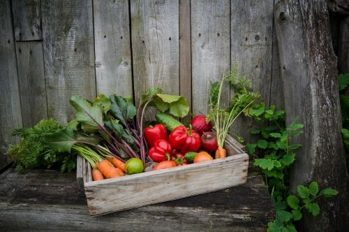 Daržovėms – dar daugiau vietos